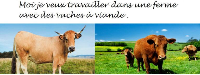 2021-05-jordan-vaches-tracteurs1
