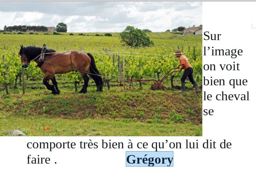 20210521-gregory-chevaux