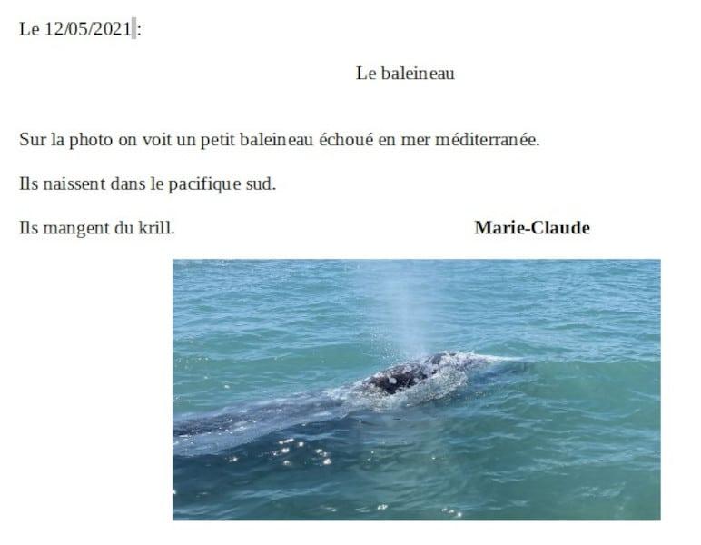 20210521-marieclaude-baleineau