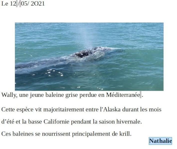 20210521-nathalie-baleineau