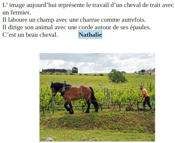 20210521-nathalie-chevaux